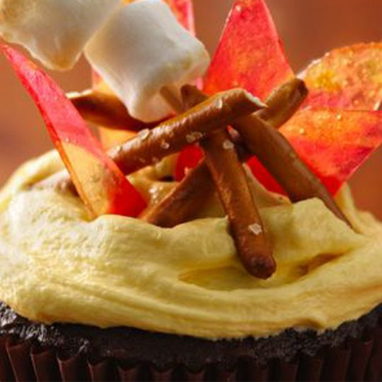 ماگ کیک زرماکارون با آتش اردو و مارشمالو
